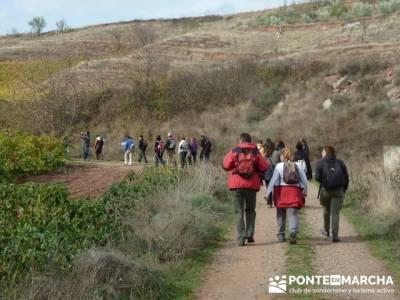 Enología en Rioja - Senderismo Camino de Santiago; senderismo en andalucia